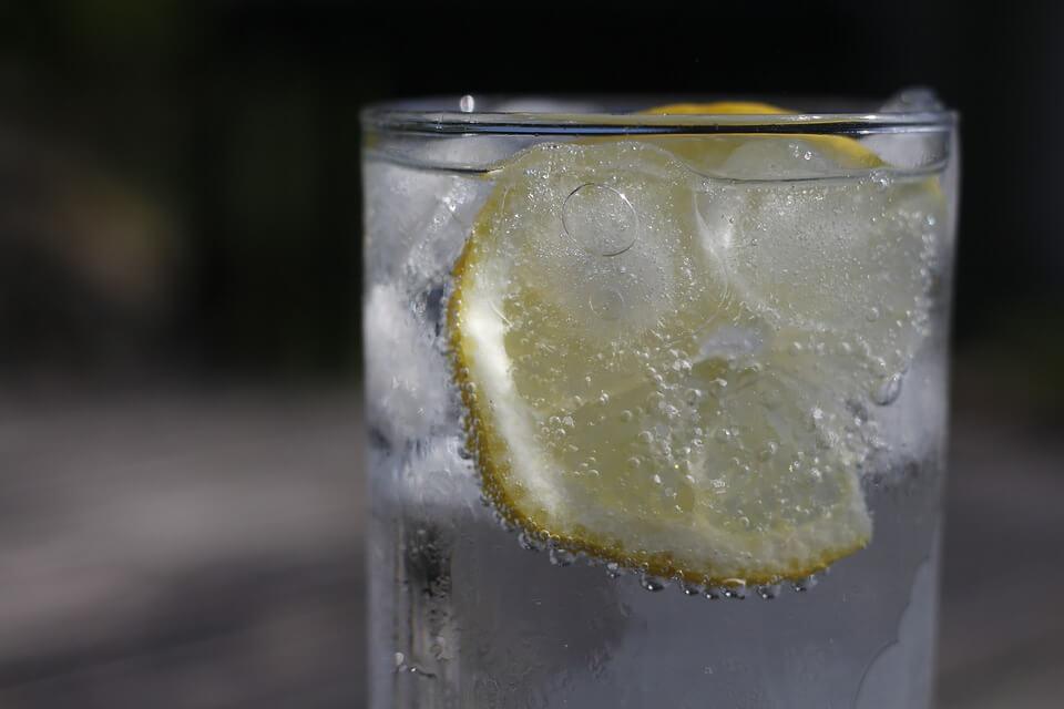 レモン系の果実を入れた炭酸水